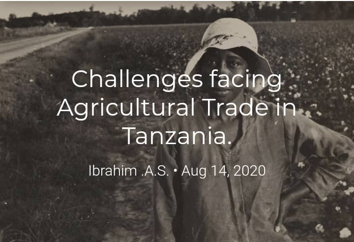 Challenges facing Agricultural Trade in Tanzania