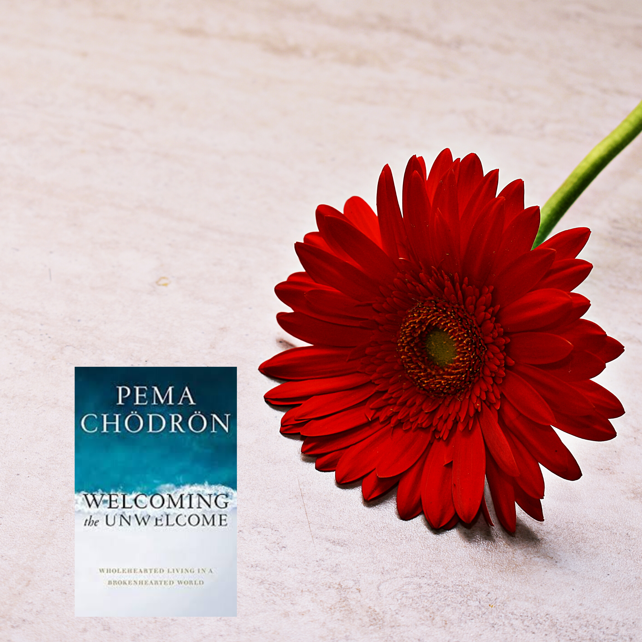 Book Review: Welcoming the Unwelcome by Pema Chodron